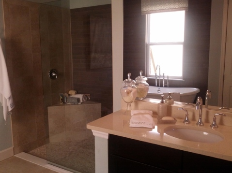 master bath with large shower and tub