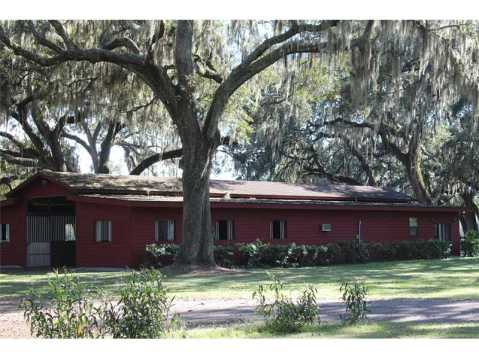 Custom Equestrian Estate for Sale in Plant City:  9 Stall Stable with Tack Room