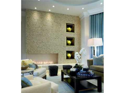 Zero Energy Luxury Home For Sale in Trinity, Florida:  Modern Fireplace