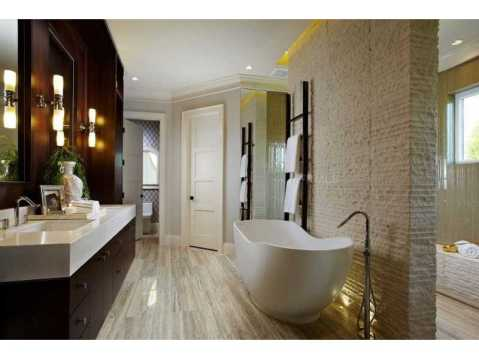 Zero Energy Luxury Home For Sale in Trinity, Florida:  Modern Master Bath with Freestanding Tub